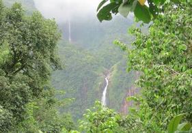 Jardin de Valombreuse Guadeloupe