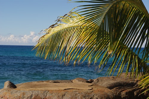 Climat Guadeloupe