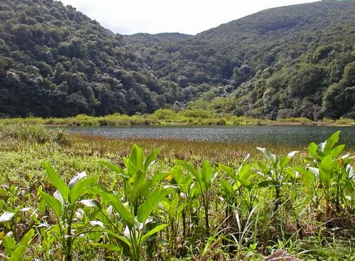 Grand Etang Guadeloupe