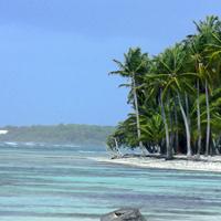 Plage de Bois Jolan, Sainte Anne Guadeloupe