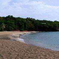 Plage de Petite Anse, entre Pointe Noire et Deshaies