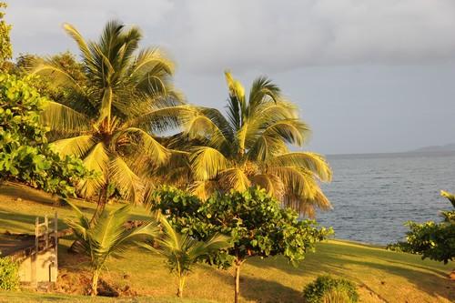 Saison humide en Guadeloupe