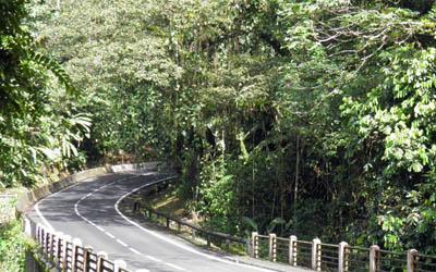 La Route de la Traversée et la Maison de la Forêt