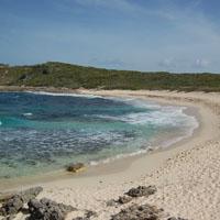 Plage des Salines Guadeloupe