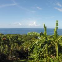 astuces pour organiser un voyage en Guadeloupe